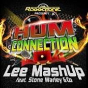 LEE MASHUP - STONE WARLEY - Hum Connection