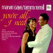 MARVIN GAYE - TAMMI TERRELL - YOU'RE ALL I NEED TO GET BY