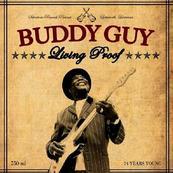 BUDDY GUY - REMEMBERIN STEVIE