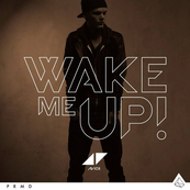 NMA-AVICII - ALOE BLACC-Wake Me Up