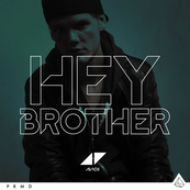 NRJ-AVICII-Hey Brother