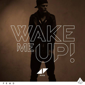 NRJ-AVICII-Wake Me Up !