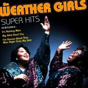 Nostalgie-THE WEATHER GIRLS-IT'S RAINING MEN