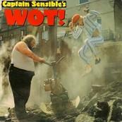 Nostalgie-CAPTAIN SENSIBLE'S-WOT