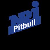 Tous les hits de Pitbull !